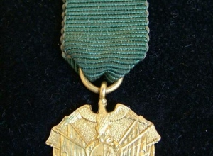 412691_110623145954_gold_medal_007